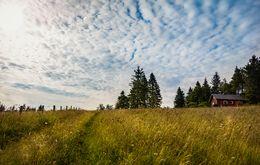 Landschaftsbild mit Wiese und wolkigem Himmel