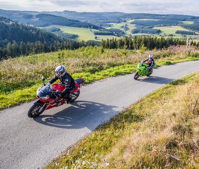Zwei Motorradfahrer fahren hintereinander eine schmale Straße hinauf, dahinter Ausblick auf die Waldlandschaft